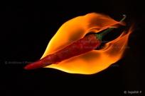 Burning Hot!