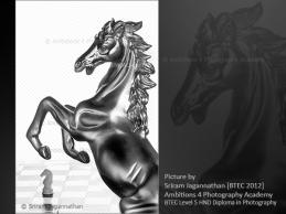 Chess - Horse