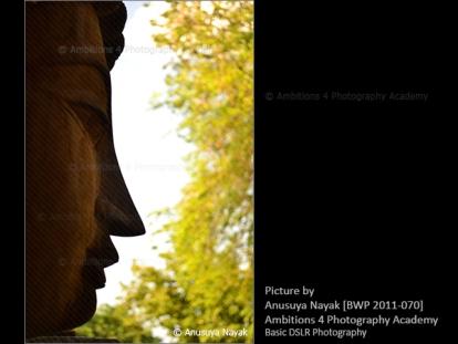Buddha - Anusuya Nayak