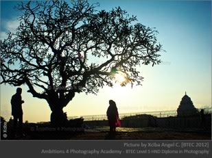 the man - the tree -the couple - temple Xciba Angel C.