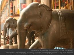 Stone elephants